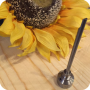 http://sunflowerpipes.com/wp-content/uploads/2015/10/cnail2.png